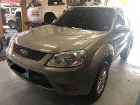 2012 Ford Escape for sale in Mandaue