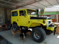 Toyota Land Cruiser 1972 for sale in Panabo