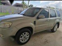 Silver Ford Escape 2013 for sale in Butuan
