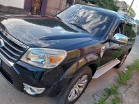Sell Black 2010 Ford Everest in Cabanatuan