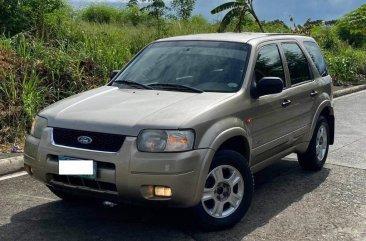 Selling Silver Ford Escape 2007 in Manila